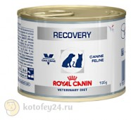 Консервы Royal Canin Veterinary Diet Recovery Feline/Canine, 1 шт.