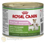 Консервы Royal Canin Starter Mousse, 1 шт.