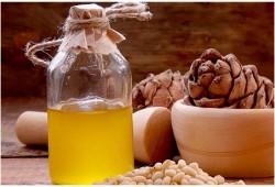 Кедровое масло из дубовой бочки