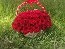 Корзина из 51 крупной розы эквадор